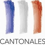 cantonales-logo-officiel-elections-20111